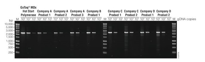 Compatibility with multiplex PCR
