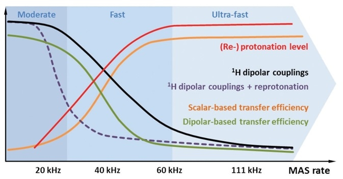 Schematic illustration of different aspects of protonation (red) and MAS respectively. In proportion to the MAS rate and/or reprotonation level, spectral resolution increases and longer-lived 13C coherences allow the use of homonuclear scalar coupling-based polarization transfers (orange). Dipolar coupling-mediated transfer starts to become inefficient at MAS rates ≥20 kHz, due to averaging effects (green). Using strongly deuterated samples, 1H dipolar couplings are already effectively attenuated at moderate MAS rates (purple). Under fast to ultra-fast rates, MAS averages out 1H dipolar couplings efficiently, even in fully protonated samples (black).
