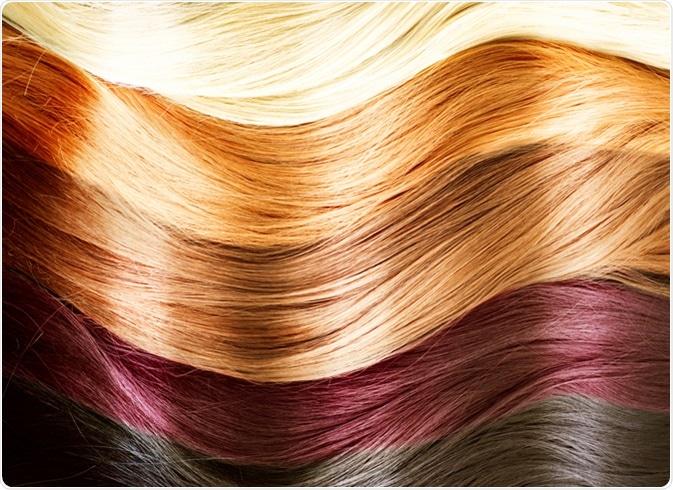 Paleta de cores do cabelo. Textura do cabelo. Crédito de imagem: Subbotina Anna/Shutterstock