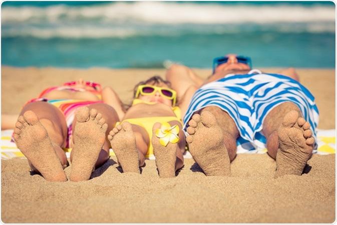 Haber de imagen: estudio soleado/Shutterstock