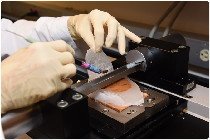 Brain tissue being sectioned using microtome.