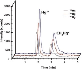 10 μg/L Hg(II) and CH3Hg+. Chromatograms obtained at different masses were shifted for clarity. Column: DVB-C18 column, 150 × 4.6 mm, 2 μm; eluent: 50 mmol/L pyridine, 0.5% (w/v) mmol/L cysteine, 5% (v/v) methanol (pH = 3); flow rate: 1 mL/min, isocratic; m/z 199, 200, 201, 202.