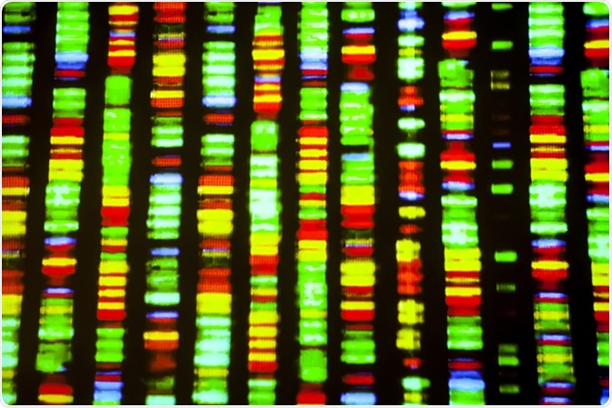 DNA sequence. Image Credit: Gio.tto / Shutterstock