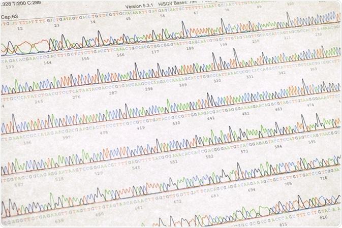 DNA sequencing result sheet. Image Credit: SINITAR / Shutterstock