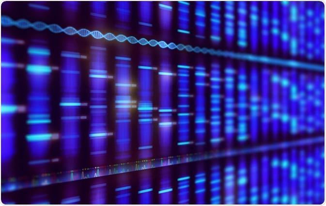 Secuencia de la DNA. Haber de imagen: ktsdesign/Shutterstock