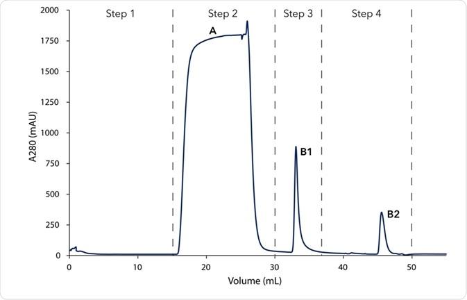 Chromatogram of the two-step mouse IgG purification