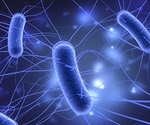 Scientists develop genetically engineered probiotic that targets and kills cancer cells in the gut