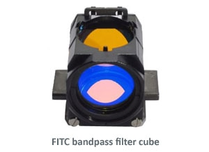 FITC filter wtext