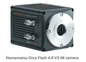 Hama Orca Flash V3 w text