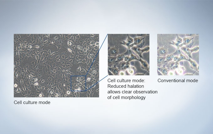 Cell culture mode