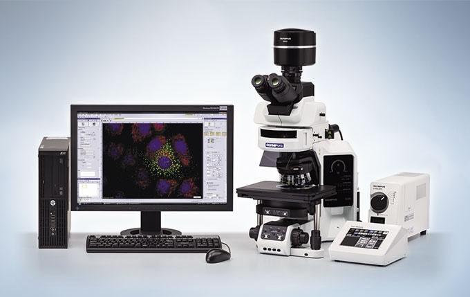 Efficient Observation and Experimentation