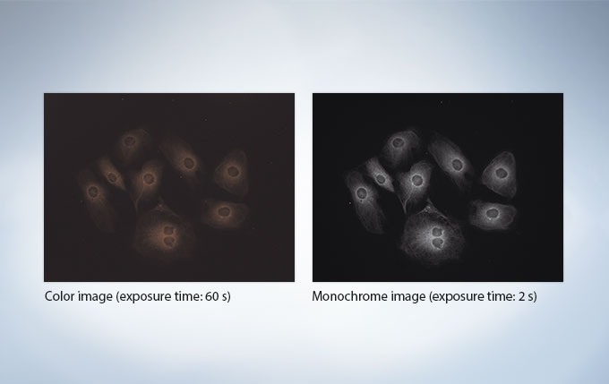 High-sensitivity for fluorescence, includingIR dyes