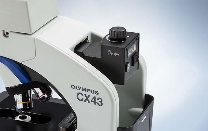 Simple Fluorescence Observation