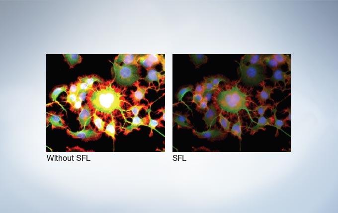 Super Fluorescence (SFL) Mode Optimizes for Correct Exposure