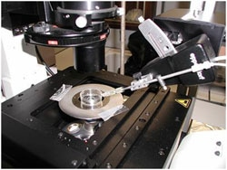 XploRA INV sample stage equipped with micro-injector
