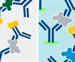Choosing the Right Antibody for an Application: Step by Step