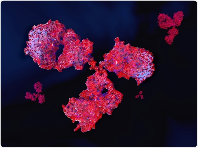 Antibodies - By Juan Gaertner