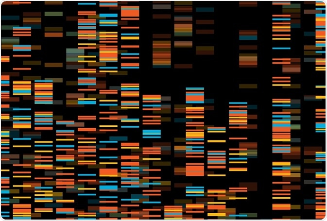 Functional genomics - By Zita