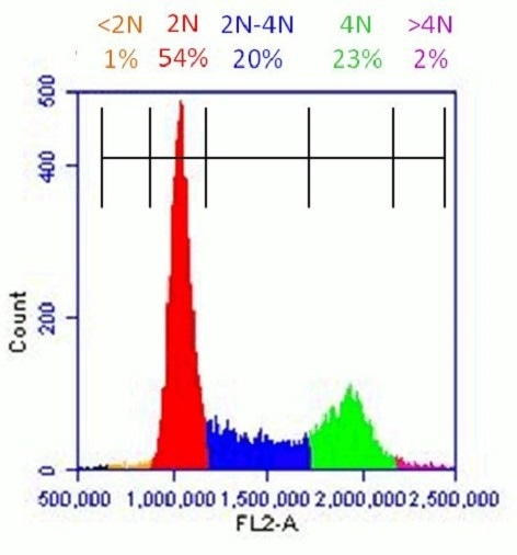 Healthy population of HeLa cells analyzed with Propidium Iodide Flow Cytometry Kit (ab139418):  Flow cytometer software was used to establish markers on a histogram plot to quantify the percentage of cells with <2N (dead cells), 2N (G1 phase), 2N-4N (S-phase), 4N (G2 phase) and >4N (M phase) content.