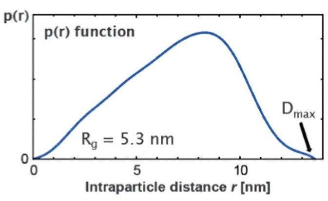 Pair distance distribution function p(r) for the protein apoferritin.