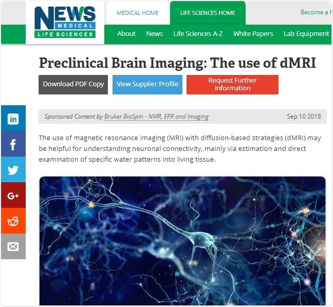 Preclinical Brain Imaging Article Example