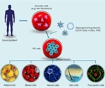 Genes that Control Pluripotency