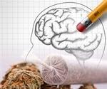 Smoking pot can damage memory study confirms