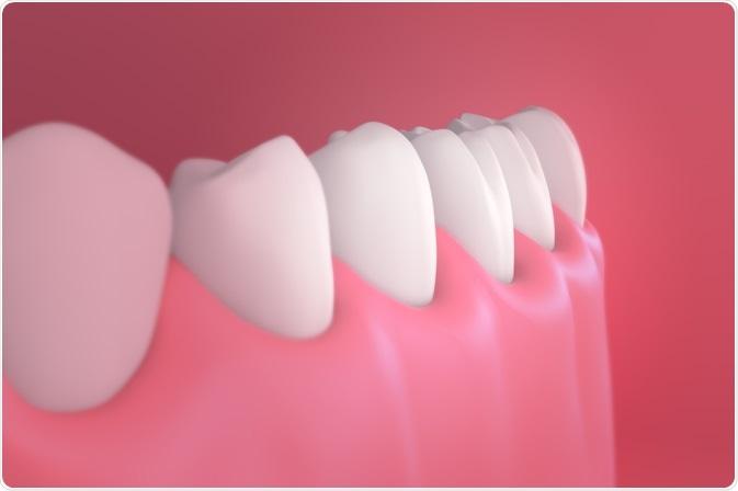 Healthy human gums - By Maen CG