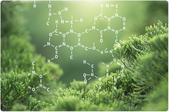 Química orgánica - por el estudio de Marchu