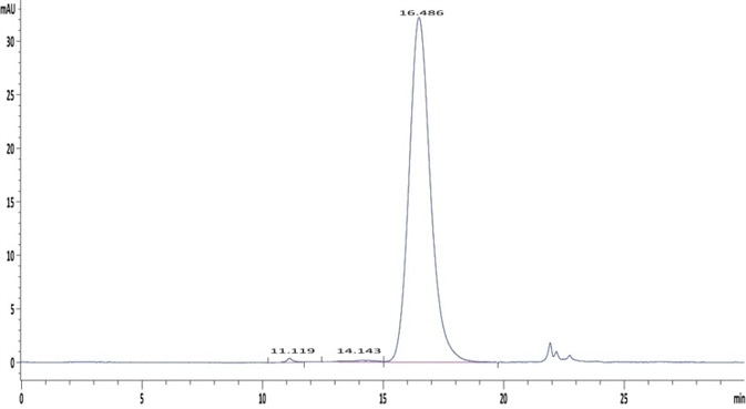 The purity of Human Fc gamma RIIA/CD32a (R167) Protein (Cat. No. CDA-H5221) is greater than 95% as determined in a HPLC analysis.
