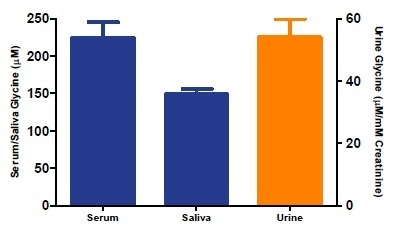 Estimation of Glycine concentration in human serum, saliva, and urine. Samples were deproteinized using 10 kDa spin columns and diluted using Glycine Assay Buffer (Serum: 64-fold; Saliva: 32-fold, Urine 128-fold. Twenty-five microliters of each diluted sample were spiked with 0.3 nmol of Glycine Standard and assayed following the protocol. Glycine concentrations are: 224 ± 21 μM, Saliva: 149 ± 21 μM, Urine: 54 ±4 μM/mM Creatinine.
