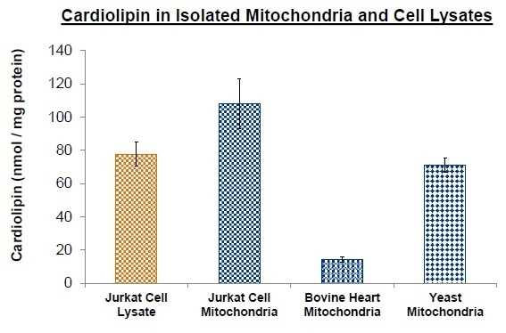 Cardiolipin measurement in biological samples. Cardiolipin was measured using BioVision's Cardiolipin Quantification Kit in Jurkat cell lysate, Jurkat cell isolated mitochondria, bovine heart mitochondria, and yeast mitochondria (S. cerevisiae). Each bar represents mean ± standard deviation of three samples.