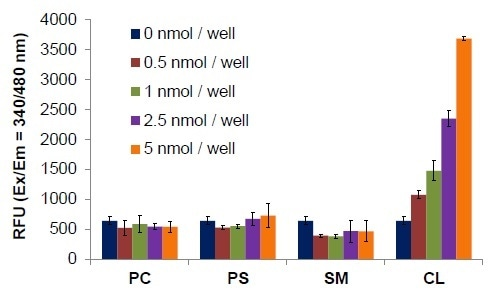 Assay specificity for detection of cardiolipin versus other lipids. Signal from phosphatidylcholine (PC), phosphatidylserine (PS), sphingomyelin (SM), and cardiolipin (CL) demonstrates the specificity of the Cardiolipin Probe. All assays were performed according to the kit protocol.