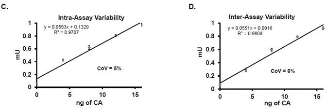 CA activity in mU per ng: (C) Intra-assay variation and coefficient of variation (n = 3). (D) Inter-assay variation and coefficient of variation (n = 3).