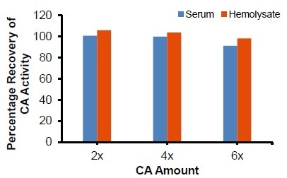 Spike recovery of CA activity in serum and hemolysate: Samples were spiked with known amounts of CA and measured using BioVision's CA Activity Assay Kit. The recovery was always ~100%.