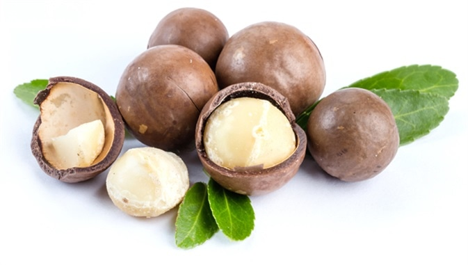 Macadamia nuts. Image Credit: KarepaStock / Shutterstock