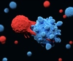 Study sheds light on mechanisms that prevent autoimmune attack