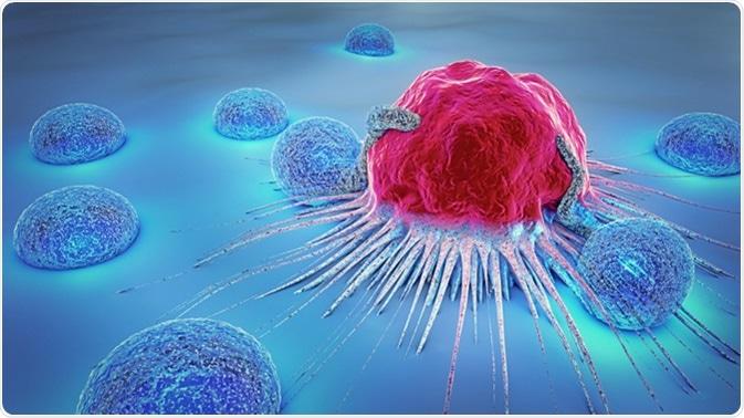 3d illustration of a cancer cell and lymphocyte. Image Credit: Christoph Burgstedt