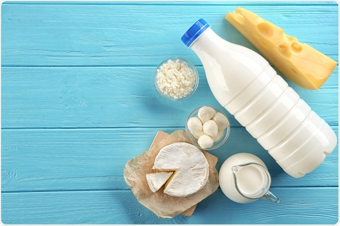 Milk, cheese, and cream - dietary sources of calcium - a photo by Africa Studio