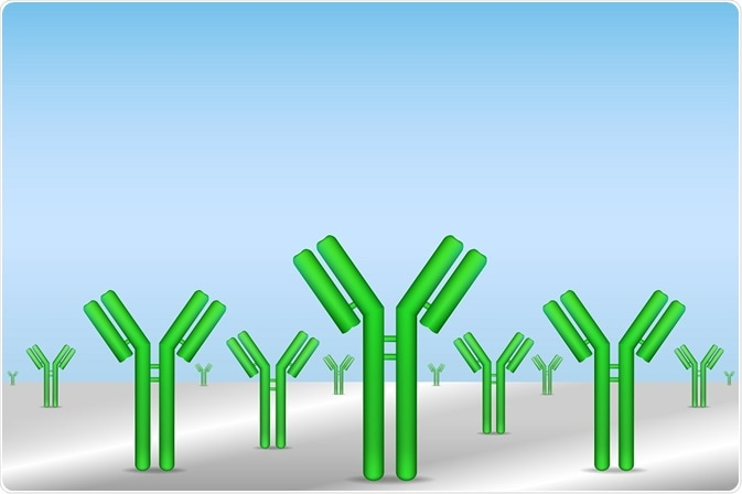 Antibodies -By extender_01