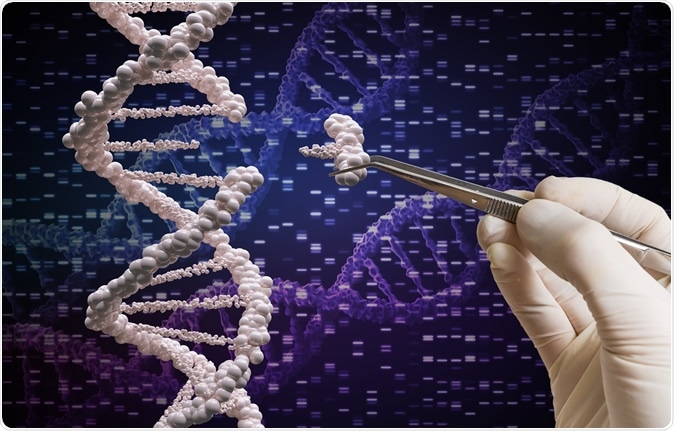 Genetic manipulation and DNA modification concept. Image Credit: vchal / Shutterstock