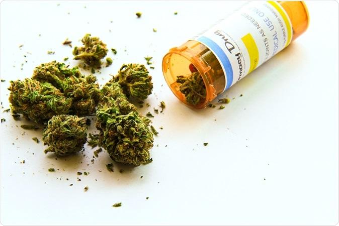 Medical Marijuana - Image Credit: Atomazul / Shutterstock