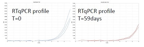 qRT-PCR results