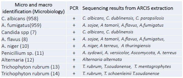 Sequencing analysis. All samples were processed rapidly and subjected to PCR and Pyrosequencing. All samples were PCR positive and correctly identified by sequencing analysis.