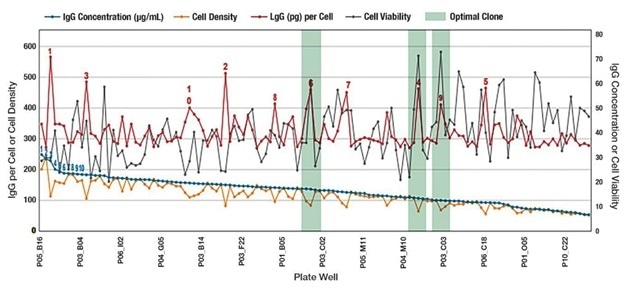 Example of simultaneously screening for IgG titer and cell health attributes. The blue line represents IgG concentration and clone ranking that would be typical of legacy technologies measuring only IgG titer such as ELISA or BLI. A more complete story —and the advantages of the Intellicyt integrated platform capability—is told in the additional data points relating to cell number and cell health. The red line is IgG quantitation per cell. The gray line demonstrates that while the IgG concentration declined there are still several very viable clones. The green shading shows clones that have high IgG titers on a per cell basis. These clones could be interesting candidates for downstream processing and would likely have been excluded based solely on ranking by IgG titer. By combining separate time-consuming steps in cell line screening processes, the Intellicyt platform saves time, while providing valuable information on clone productivity.