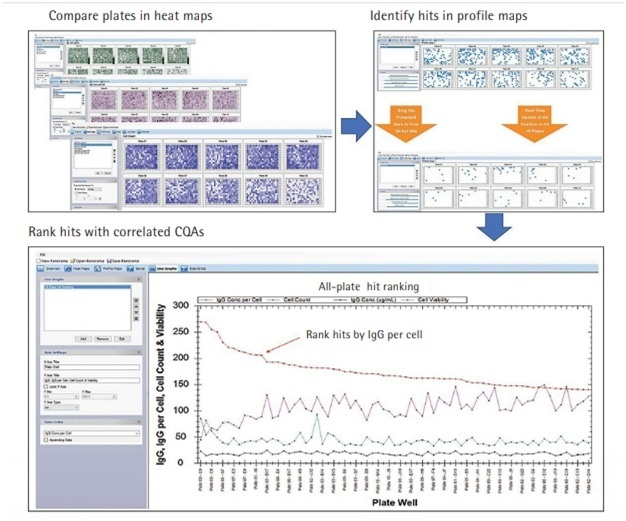 Cross-Plate Data Analysis Identifying Best Productive IgG Clones in a Screening Campaign.