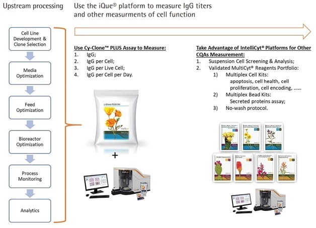 Use Cy-Clone PLUS and iQue3 PLUS Platform to Measure Multiple Readouts in Whole Upstream Processing of Human IgG Therapeutic Proteins.