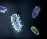 Cloning Unicellular Organisms