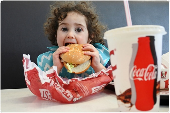 Fast food or junk food. Image Credit: Shutterstock / ChameleonsEye