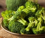 Research provides data on nutritional content of broccoli for breeders